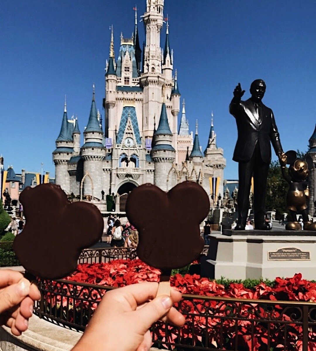 christmas time in disney world josie schoonover - Disneyworld At Christmas Time