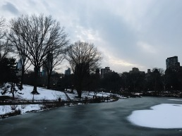 Got to see Central Park in the snow and it was a dream!